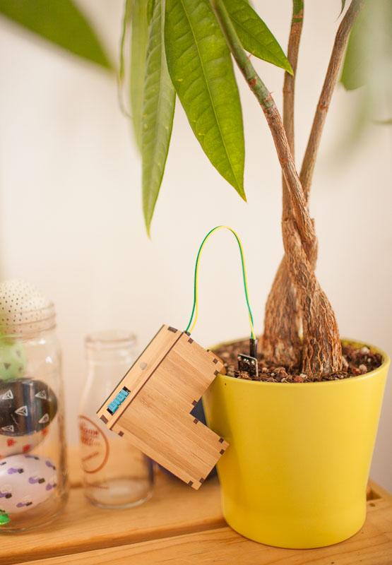 plant_friends_07
