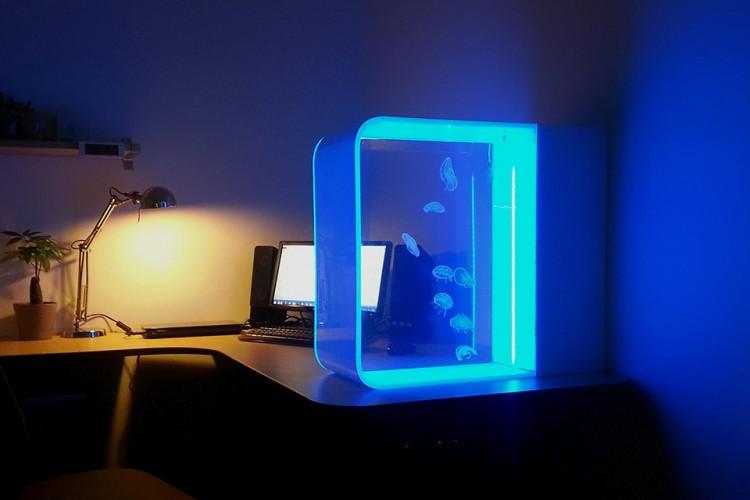 Cubic-Pulse-80-Jellyfish-Aquarium-1